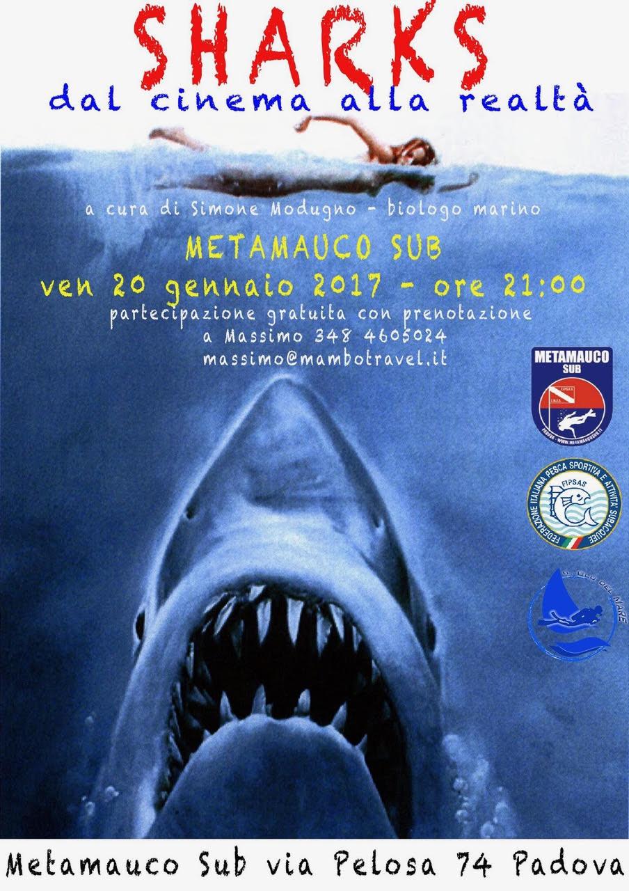 INCONTRO A PADOVA – SHARKS dal cinema alla realtà